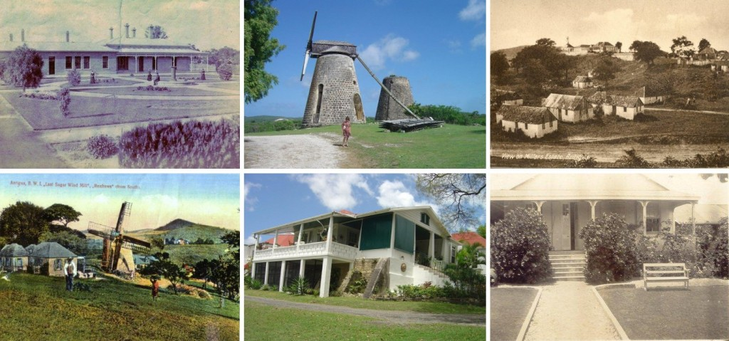 Nugent homes in Antigua: from top left, Merrywing Hall, home of Dr Nicholas, Betty's Hope where Sir Oliver was born and Millar's, his marital home, (lower from left) Renfrew, Scotts Hill and Erdiston, the homes of later generations of Nugents.