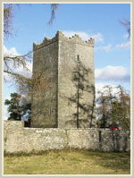 Ross Castle near Mount Nugent. Another castle built by a Nugent, now offering rooms to rent.